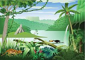 Jungle landscape at a river with many plants and animals