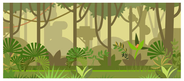 jungle landscape with trees and plants vector illustration - jungle stock illustrations