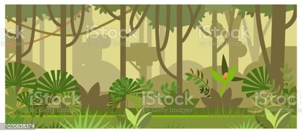 Jungle Landscape With Trees And Plants Vector Illustration — стоковая векторная графика и другие изображения на тему Абстрактный
