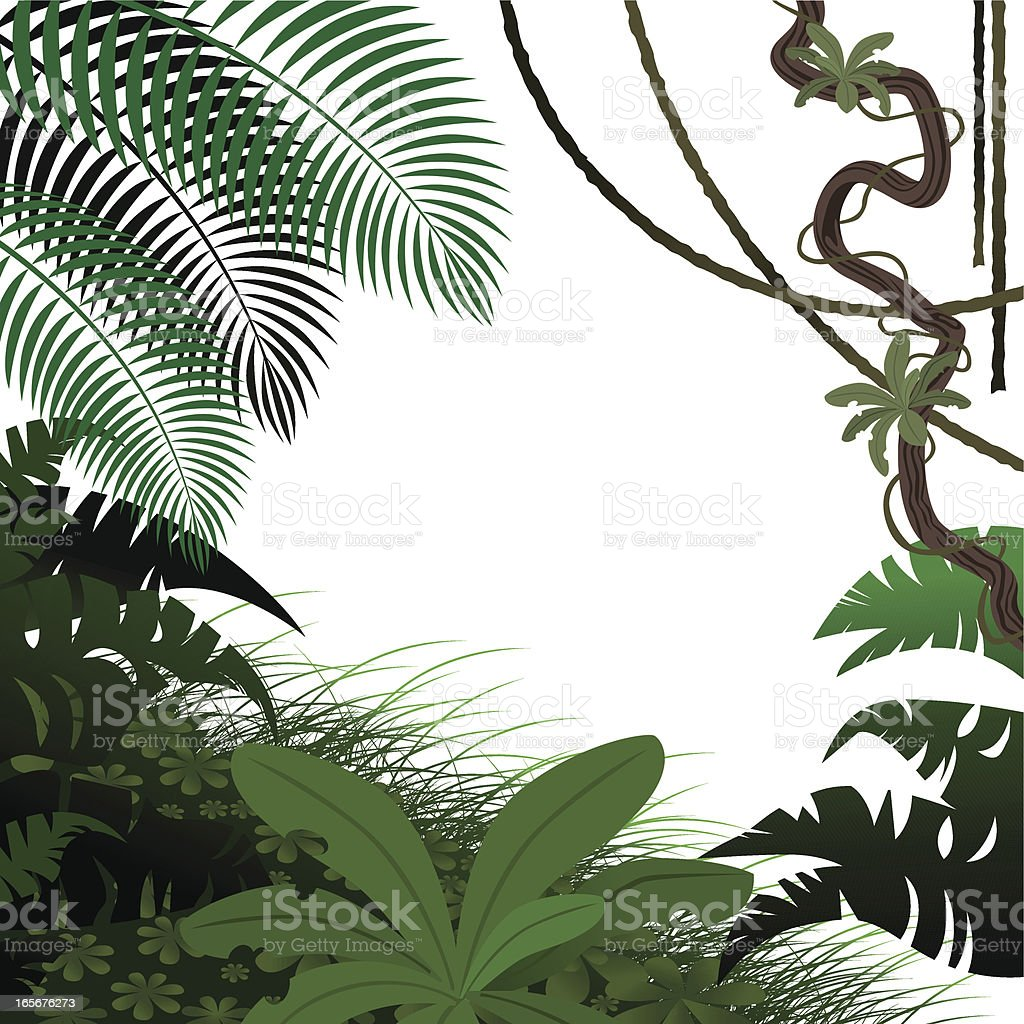 Jungle Leaves royalty-free stock vector art