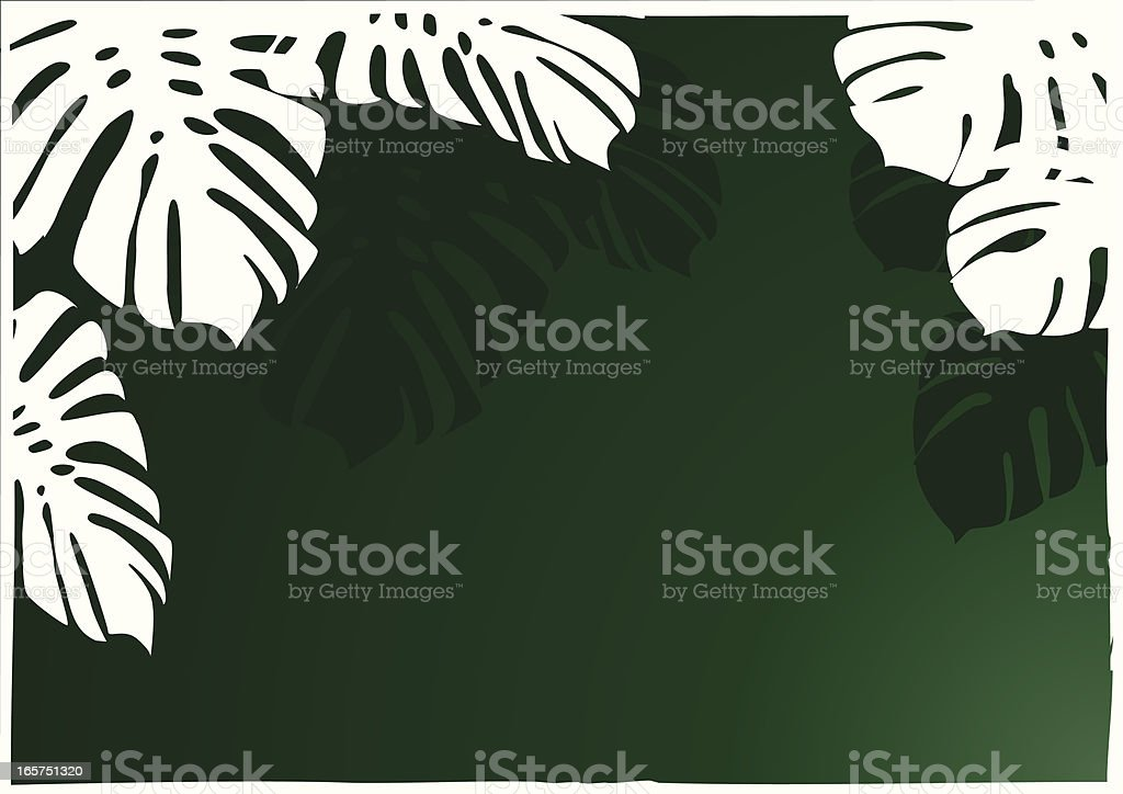 Jungle carta de - ilustración de arte vectorial