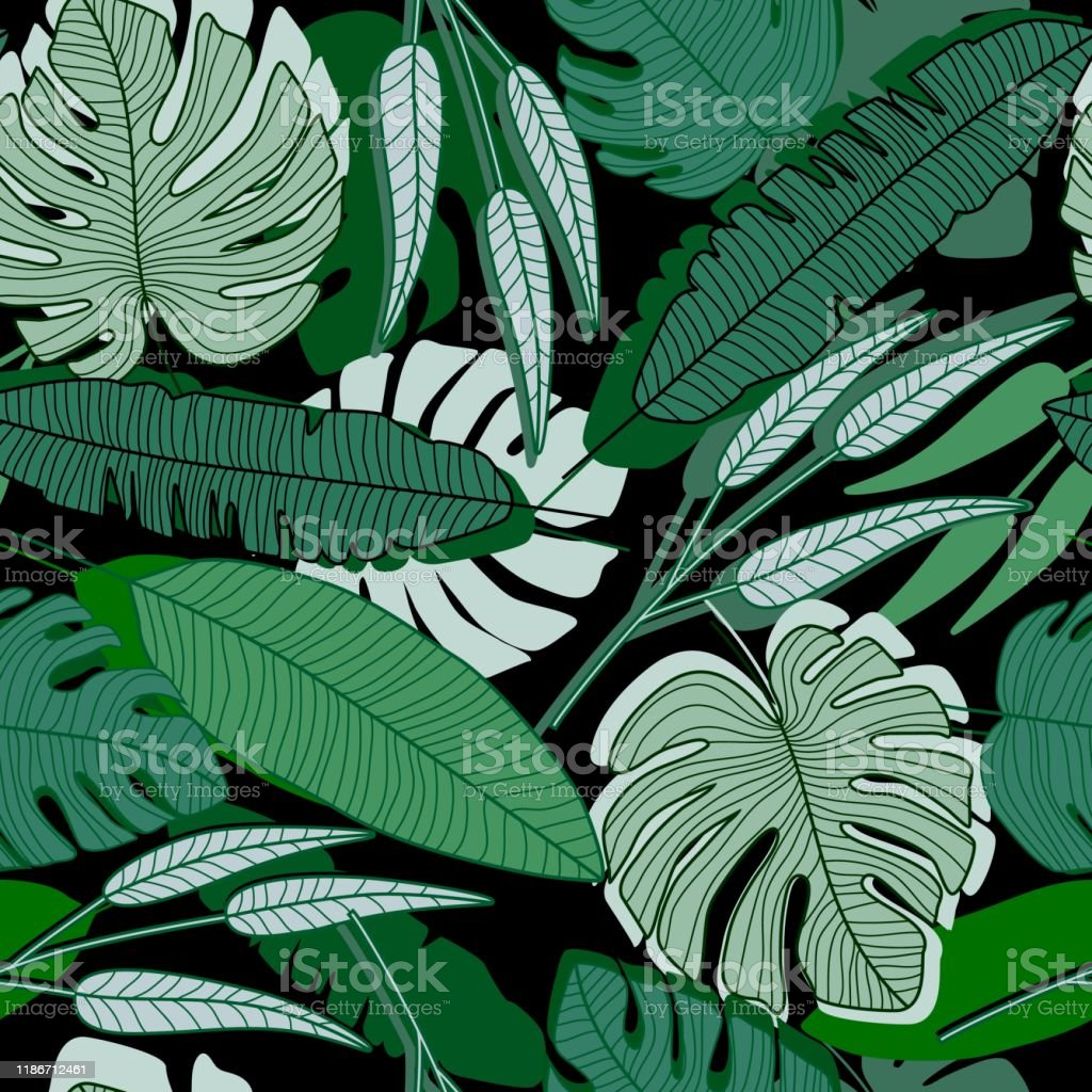 Jungle Palm Leaf Seamless Pattern Ttropical Palm Leaves Wallpaper Stock Illustration Download Image Now Istock Ornamental curly swirls background | designed by vexels.com. jungle palm leaf seamless pattern ttropical palm leaves wallpaper stock illustration download image now istock
