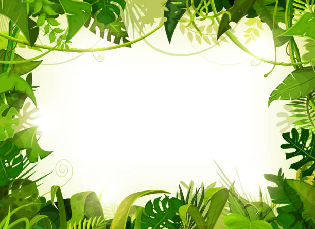 jungle tropical landscape background - jungle stock illustrations