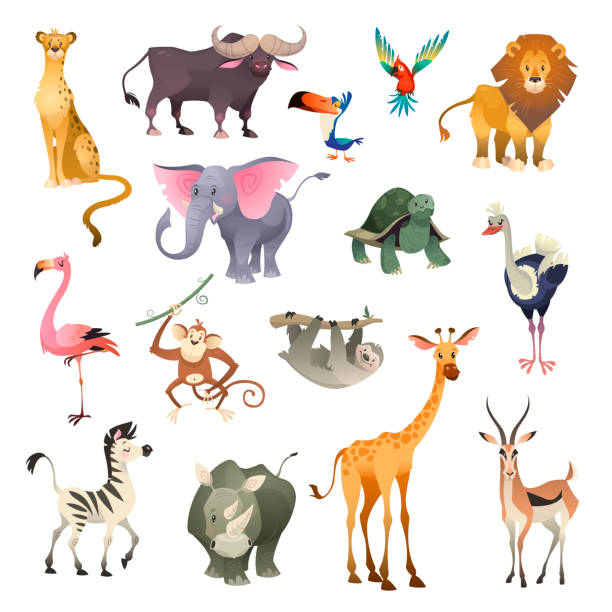 Jungle wild animals. Savannah forest animal bird safari nature africa tropical exotic forest marine mammals, cartoon set Jungle wild animals. Savannah forest animal bird safari nature africa tropical exotic forest marine mammals, cartoon vector set animal stock illustrations