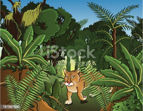 Amazonian jungle with a Puma strolling in. File also available in Illustrator CS4