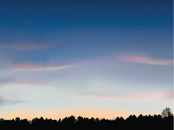 just after sunset with tree line background - dusk stock illustrations