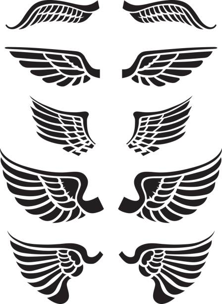 Just wings A set of vector wings to be used with logos type or images. Combine with button backgrounds or other artwork to form an ultimate mash up. aircraft wing stock illustrations