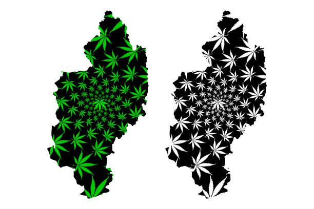 Kachin State (Administrative divisions of Myanmar, Republic of the Union of Myanmar, Burma) map is designed cannabis leaf green and black, Kachin map made of marijuana (marihuana,THC) foliage Kachin State (Administrative divisions of Myanmar, Republic of the Union of Myanmar, Burma) map is designed cannabis leaf green and black, Kachin map made of marijuana (marihuana,THC) foliage myitkyina illustrations stock illustrations