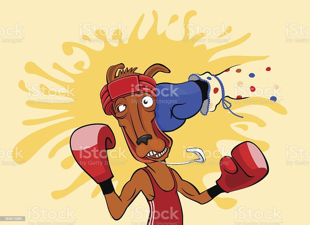 Kangaroo boxer vector art illustration