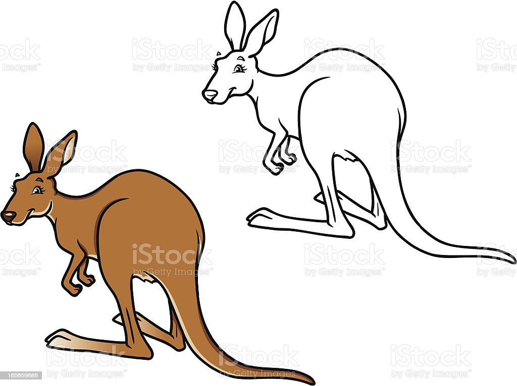kangaroo cartoon - line art & color vector art illustration