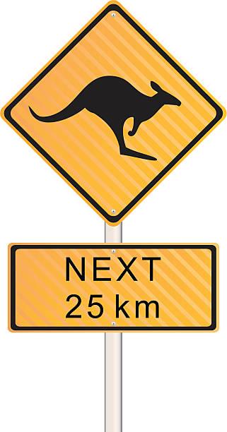 kangaroo crossing sign - kangaroo stock illustrations