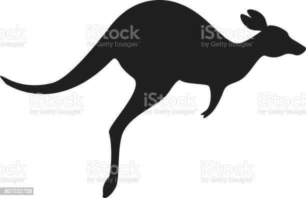 Kangaroo icon vector vector id807232738?b=1&k=6&m=807232738&s=612x612&h=kkb6 v 1bs3es8 phrbm2ijluknjzf uw ftiarteqc=