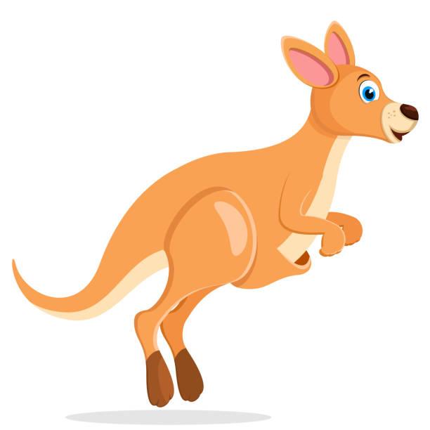 Kangaroo jumps and smiles on a white background. Kangaroo jumps and smiles on a white background. Character kangaroo stock illustrations