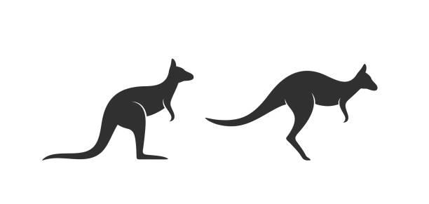 Kangaroo logo. Isolated kangaroo on white background EPS 10. Vector illustration kangaroo stock illustrations