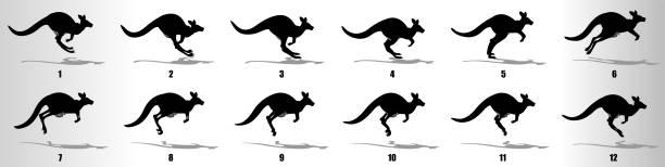 Kangaroo Run cycle animation frames, loop animation sequence sprite sheet Running Kangaroo animation sequence, loop animation sprite sheet kangaroo stock illustrations