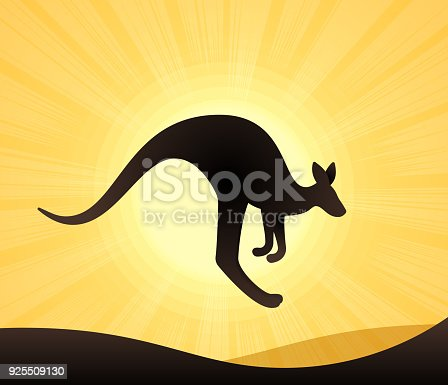 Kangaroo hoping in the outback Australia.