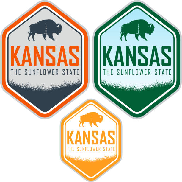 kansas vektor-label mit zubr buffalo bisons - nationalpark stock-grafiken, -clipart, -cartoons und -symbole