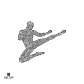 Karate and kung fu. Karate jump kick. Fighter. 3d model of man. Sport symbol. Design element. Asian martial arts. Vector illustration.