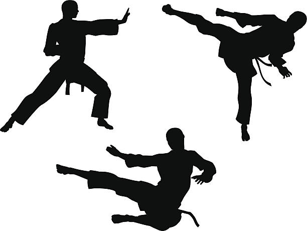karate martial art silhouettes - martial arts stock illustrations