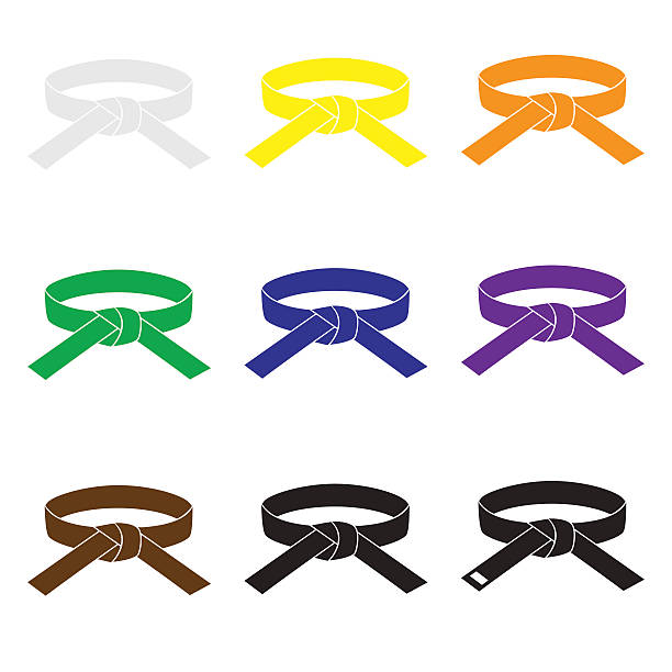 karate martial arts color belts icons set eps10 - martial arts stock illustrations