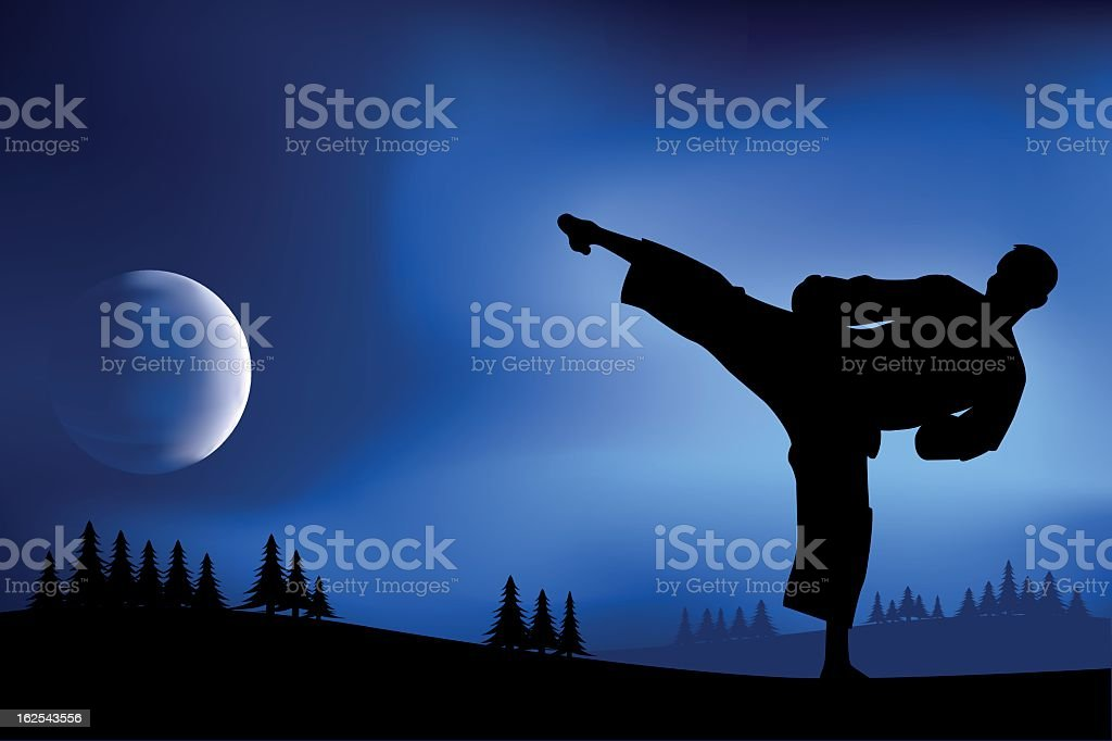 karate vector art illustration