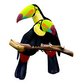 Two keel-billed toucans sitting on the branch. Vector illustration isolated on white background.