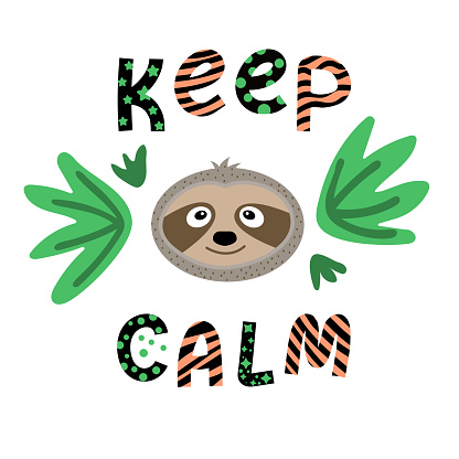 Keep Calm - hand drawn lettering. The face of a smiling sloth animal. Flat vector illustration, t shirts, cups print, poster design