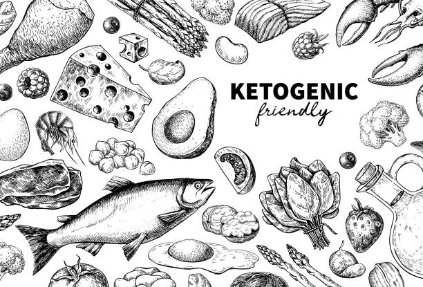 Keto diet vector drawing. Ketogenic hand drawn template. Vintage engraved sketch Keto diet vector drawing. Ketogenic hand drawn template. Vintage engraved sketch. Organic food - seafood, vegetables, eggs, meat, nuts. Healthy eating concept, paleo products, label, banner packaging avocado borders stock illustrations
