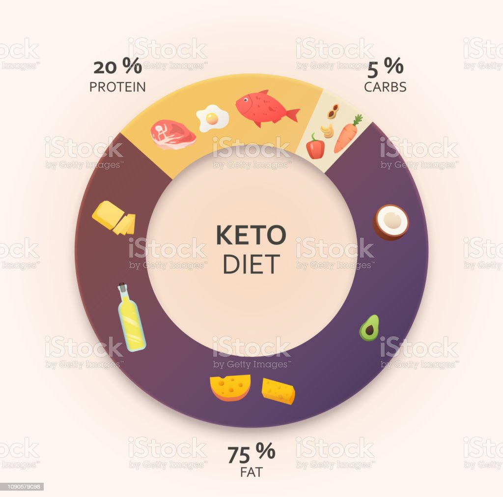 Ketogenic diet diagram. royalty-free ketogenic diet diagram stock illustration - download image now