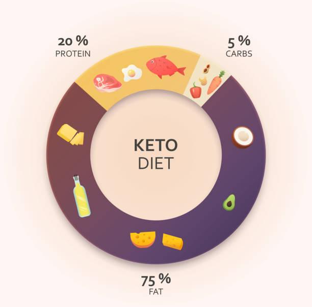 ilustrações, clipart, desenhos animados e ícones de diagrama de dieta cetogênica. - dieta paleo