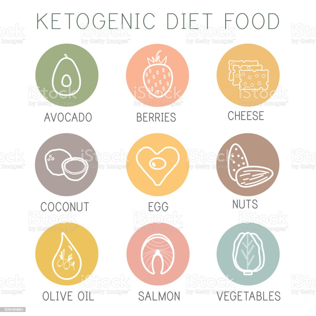 Ketogenic diet food, high healthy fats royalty-free ketogenic diet food high healthy fats stock illustration - download image now