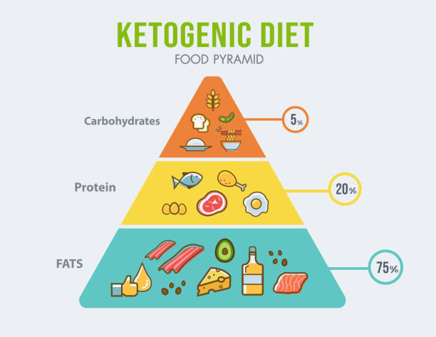 Ketogenic diet food pyramid infographic for healthy eating diagram, low carbs, high healthy fat, long term effect, protein and FAT. Vector icon banner. Ketogenic diet food pyramid infographic for healthy eating diagram, low carbs, high healthy fat, long term effect, protein and FAT. Vector icon banner. ketogenic diet stock illustrations