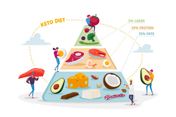 Ketogenic Diet, Healthy Eating Concept. Characters Set Up Pyramid of Selection of Good Fat Sources, Balanced Low-carb Food Vegetables, Fish, Meat, Cheese, Nuts. Cartoon People Vector Illustration Ketogenic Diet, Healthy Eating Concept. Characters Set Up Pyramid of Selection of Good Fat Sources, Balanced Low-carb Food Vegetables, Fish, Meat, Cheese, Nuts. Cartoon People Vector Illustration crucifers stock illustrations
