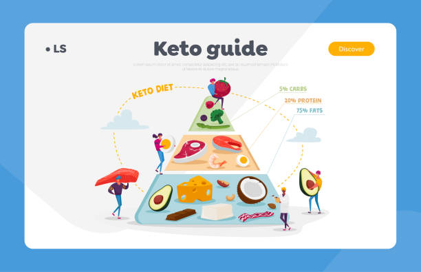 Ketogenic Diet, Healthy Eating Landing Page Template. Characters Set Up Pyramid of Selection of Fat Sources, Balanced Low-carb Food Vegetables, Fish, Meat, Cheese. Cartoon People Vector Illustration Ketogenic Diet, Healthy Eating Landing Page Template. Characters Set Up Pyramid of Selection of Fat Sources, Balanced Low-carb Food Vegetables, Fish, Meat, Cheese. Cartoon People Vector Illustration crucifers stock illustrations