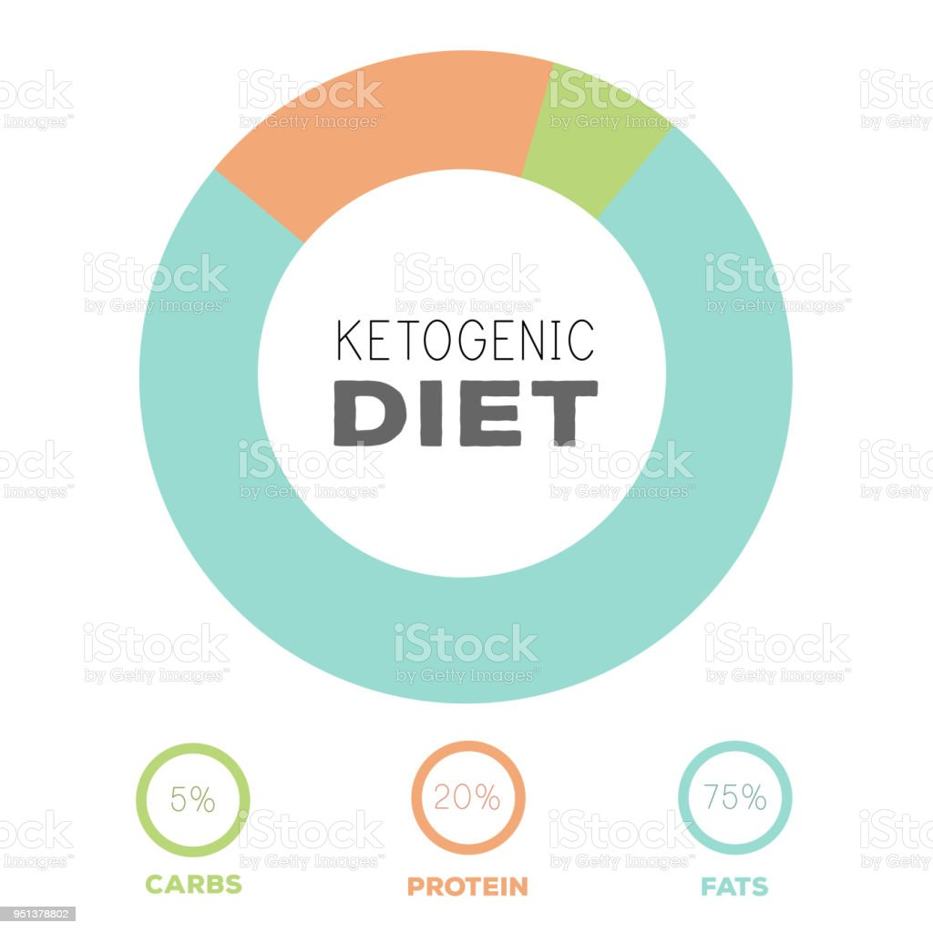 ketogenic diet macros diagram, low carbs, high healthy fat vector art illustration