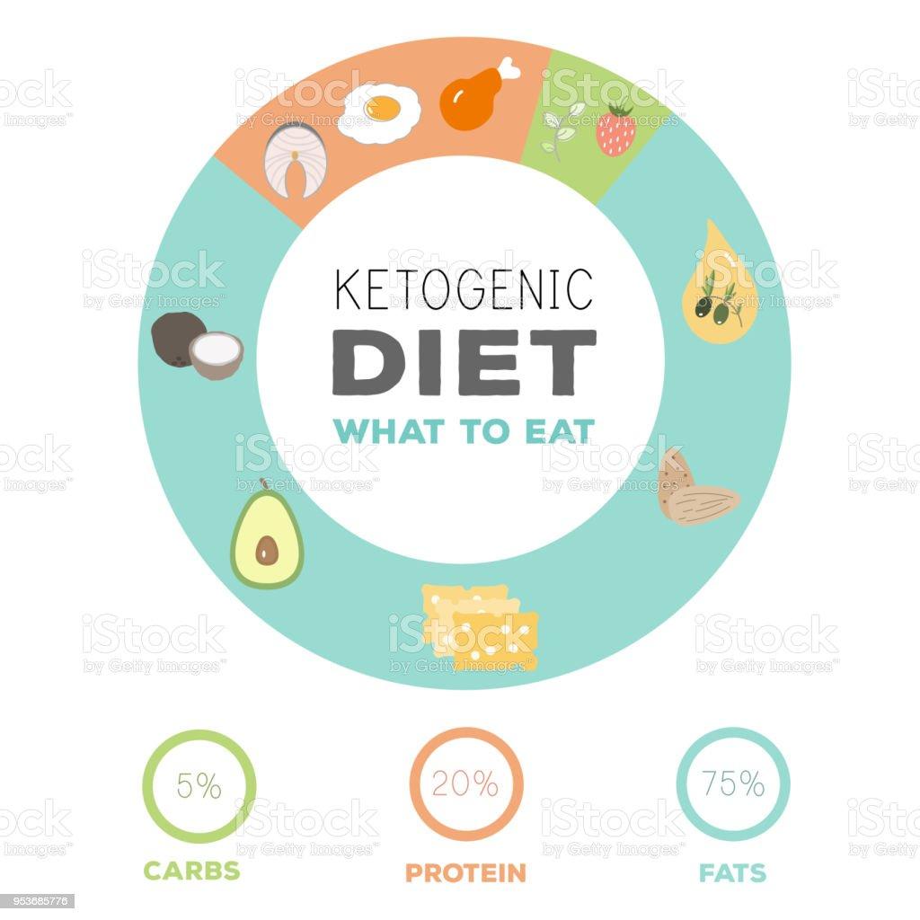 ketogenic diet macros food diagram, low carbs, high healthy fat vector art illustration