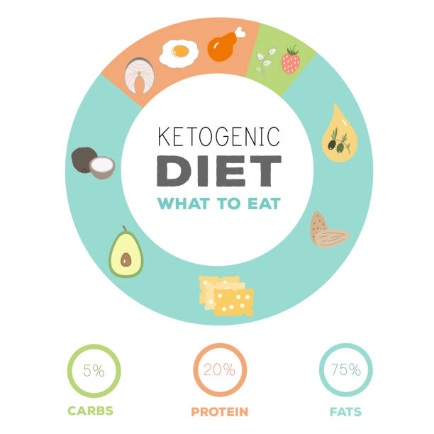 ketogenic diet macros food diagram, low carbs, high healthy fat vector art illustration