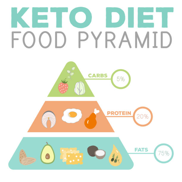 ketogenic diet macros pyramid food diagram, low carbs, high healthy fat vector art illustration