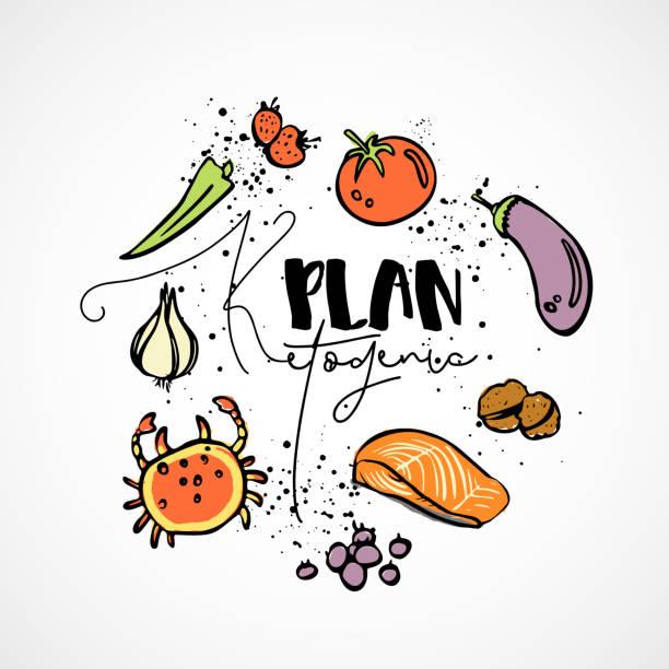 ilustrações, clipart, desenhos animados e ícones de cetogênica plano - ilustração de desenho vetorial - esboço multi-coloridas conceito saudável. keto saudável dieta plano com textura e elementos decorativos em forma de círculo - todos os nutrientes, como gorduras, carboidratos e proteínas e ícones - dieta paleo