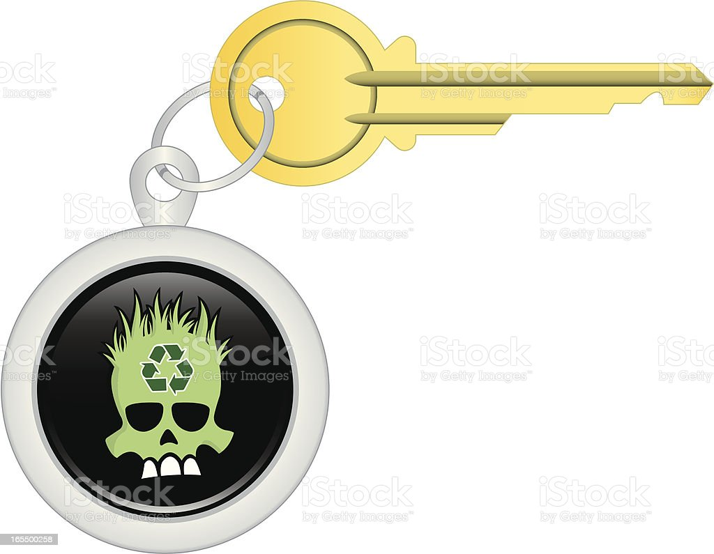 Key Chain –Eco Skull royalty-free key chain eco skull stock vector art & more images of brass