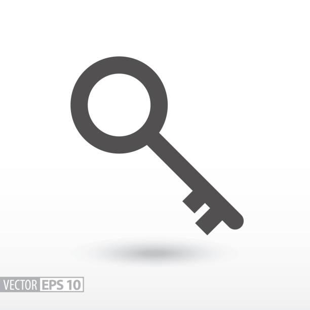 key - flat icon - keys stock illustrations, clip art, cartoons, & icons