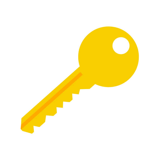 key vector symbol icon – lock protection security sign - klucz stock illustrations