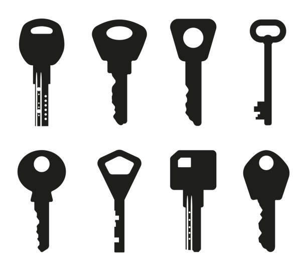 keys silhouette collection. key icon. vector illustration - klucz stock illustrations