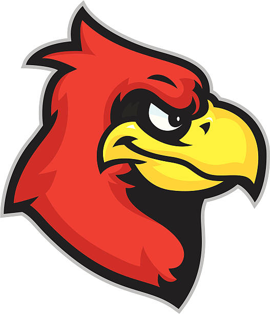 kid cardinal mascot head - cardinal mascot stock illustrations, clip art, cartoons, & icons