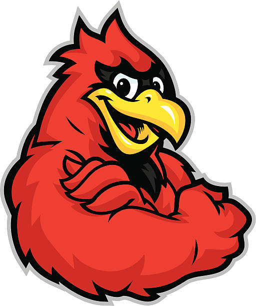kid cardinal mascot - cardinal mascot stock illustrations, clip art, cartoons, & icons