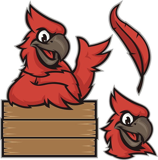 kid cardinal sign pack - cardinal mascot stock illustrations, clip art, cartoons, & icons