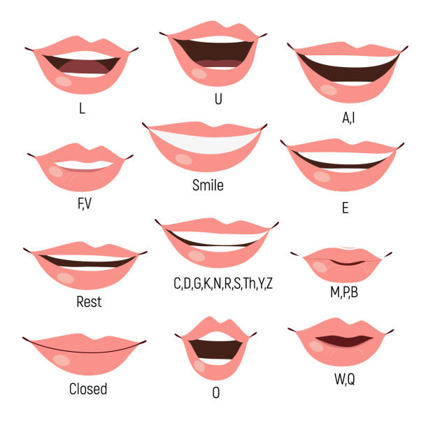 Kid mouth animation. Phoneme mouth chart. Alphabet pronunciation vector art illustration