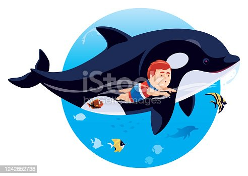 istock kid swimming with orca 1242852738