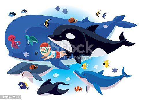 istock kid swimming with sea creatures 1256282360
