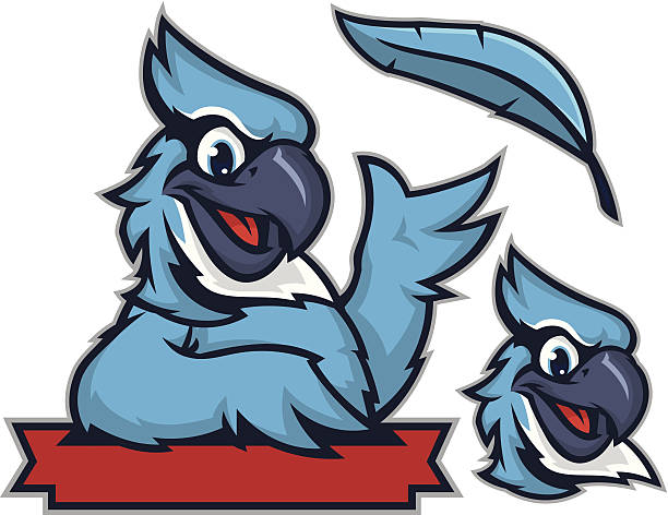 Kiddie Blue Jay vector art illustration